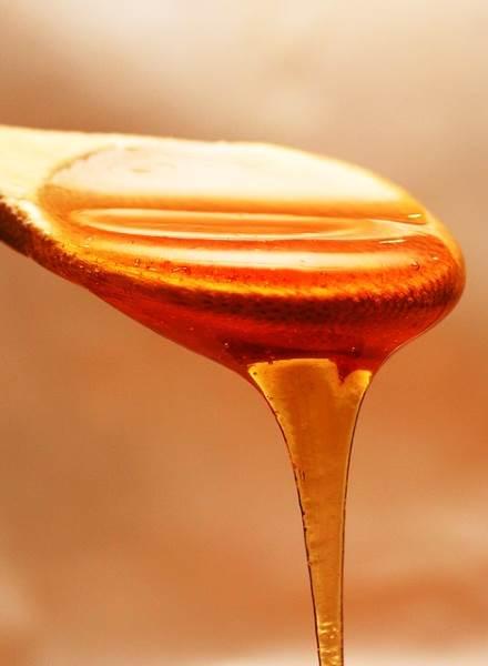 Dodaci prehrani na bazi meda